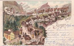 300645Gruss Aus Den Bergen, Litho. Mit Bahnpoststempel AMBULANT 29-04-1902.-40 Nr. 20 - Suisse