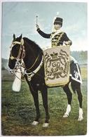 DRUM HORSE - HUSSARS - Uniformen