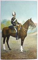 TRUMPETER 13 Th HUSSARS - REWIEW ORDER - Uniformen