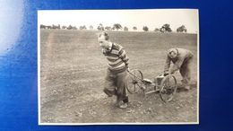 PHOTO TCHEQUIE MATERIEL AGRICOLE TCHEQUE TRACTEUR - Landbouw