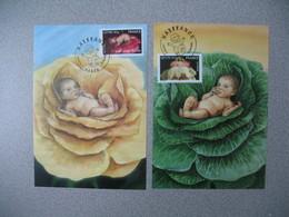 Carte-Maximum 2005 - N° 3804 Et 3805 - Maximumkarten