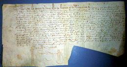 VELIN 17°  TRONCHAY SEIGNEURS DE THOIRY ORDRE POUR LA TUTELLE DES BIENS DE LA FAMILLE DE TRONCHAY  PARIS 1631 - Manuscripts