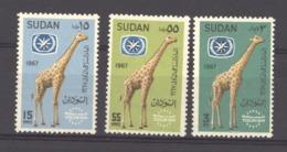 Soudan  :  Yv  195-97  **    Girafe - Soudan (1954-...)