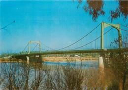 CPSM Bagdad-Le Pont Suspendu                                                      L2723 - Iraq
