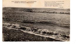ILE D OLERON L OCEAN AU PERTUIS DE MAUMUSSON - Ile D'Oléron
