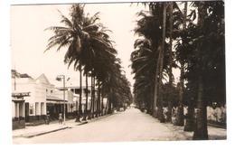 Belgisch Congo - Congo Belge - Albertville - Avenue Storms - Albertstad - Stormslaan - Old View - Posted With Stamp - Belgisch-Kongo - Sonstige