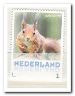 Nederland 2013, Postfris MNH, NVPH 3013, Squirrel - Periode 2013-... (Willem-Alexander)