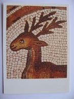 Mosaics Of Petra Church Jordan - Jordanie