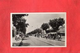 E0212 - FERRYVILLE - Avenue De France - Tunisia