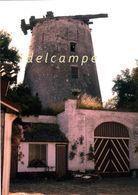 HEKELGEM - Affligem (Vlaams-Brabant) - Molen/moulin - Zeldzame Opname Van Molen De Vis In 1961 (na Onttakeling) - Affligem