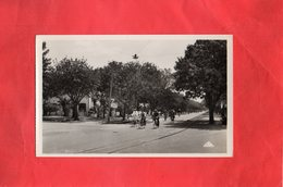E0212 - FERRYVILLE - Sortie Des Ouvriers De L'Arsenal - Tunisia