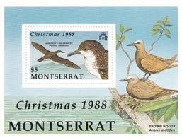 Montserrat Hb 47 - Montserrat
