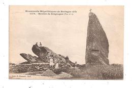 Menhir De  De Brignogan -(C.8041) - Sonstige Gemeinden