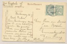 """Nederlands Indië - 1917 - 2x 2,5 Cent Cijfer Op Ansicht """" De Tjitaroen Bij Leuwisapi""""  Van Buitenzorg Naar Den Haag / NL - Nederlands-Indië"""