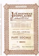 Ancienne Action - Le Logement Populaire Amélioré - Titre De 1953 - Actions & Titres