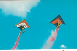 Florida Cypress Gardens Water Ski Show The Flying Kitemen - United States
