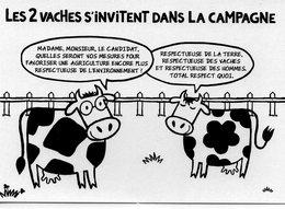 Politique Vaches élections Campagne électorale Humour - Evènements
