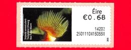 Nuovo - MNH - IRLANDA - EIRE - 2013 - Animali E Vita Marina  - Pesci - Red Tube Worm (Serpula Vermicularis) - 0.68 - 266 - Affrancature Meccaniche/Frama