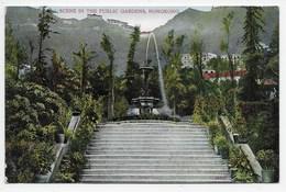 Scene In The Public Gardens, Hongkong - Lau Ping Kee - China (Hong Kong)