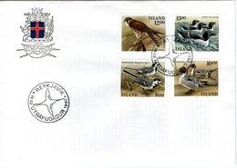 ICELAND  FDC, Birds   /  ISLANDE , Lettre De Première Jour, Oiseaux,  1986 - Adler & Greifvögel