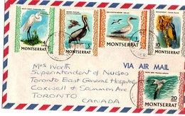 MONTSERRAT, Letter, Birds  /  Lettre, Oiseaux - Vögel