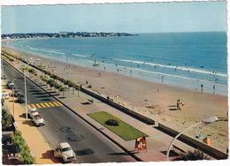 Royan: PEUGEOT 403, SIMCA ARONDE, PANHARD DYNA Z, CITROËN 2CV, DS - Le Boulevard Garnier - Toerisme