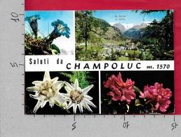 CARTOLINA VG ITALIA - Saluti Da CHAMPOLUC (AO) - Vedutine Multivue - 10 X 15 - ANN. 1997 GIARDINI PUBBLICI SCIARRA - Saluti Da.../ Gruss Aus...