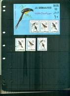 SOMALIA OISEAUX 3 VAL + BF NEUFS A PARTIR DE 1.50 EUROS - Oiseaux
