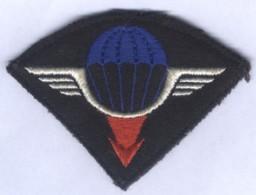 Insigne De Bras De La 25e Division Aéroportée - Ecussons Tissu