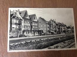 Heyst S/Mer Avenue Comte D'ursel - Cartes Postales