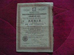 RUSSIA / RUSSIE  Action 100 Roubles : Société Des Acieries, Forges, Ateliers De Machies De BRIANSK 1913  St PETERSBOURG - Actions & Titres