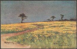 I Kirkpatrick - Buttercups At Appledore, Devon, C.1905-10 - Faulkner Postcard - England