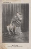 Spectacle - Femme Serpents - Charmeuse Boa - Vivarium - Entertainers