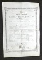 Regno D'Italia - Patente Di Maestra Elementare - Alessandria 1895 - RARO - Vecchi Documenti
