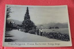 Lago Maggiore Stresa Lungolago 1937 Animata - Altre Città