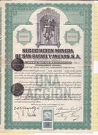 Th3MINES : ST-RAFAEL (Mexique) - Action De 50 Centavos1923 (03) - Actions & Titres