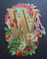 Découpi Ancien. Chocolat  LOUIT.  ALPHABET.  Lettre  W   Fraises  Des  Bois. .   11,5 X 8 Cm - Découpis