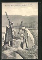 AK Srinagar, Husking Rice, Frauen Schlagen Reis Am Feldrand - Landwirtschaftl. Anbau