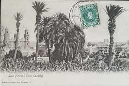 O) 1905 CIRCA-SPAIN, LANDSCAPE -ARCHITECTURE - LAS PALMAS -TREE- BAZAR ALEMAN, KING ALFONSO XIII SCT 273 5c Green, POSTA - La Palma