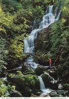 Postcard Torc Waterfall Killarney [ John Hinde ]  My Ref  B23198 - Kerry