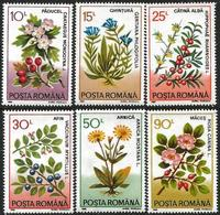 Romania 1993 Scott 3804-09 MNH Flowers - 1948-.... Republics