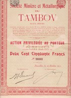 Th3MINIERE : TAMBOV - Action P. De 250 Frs1911 (15) - Actions & Titres