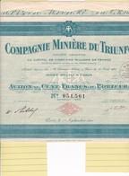 Th3MINIERE : TRIUNFO - Action De 100 Frs1924 (16) - Actions & Titres