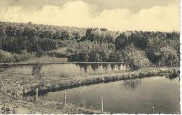 ANLOY : Les étangs De Landiny - RARE CPA - Cachet De La Poste 1956 - Wellin