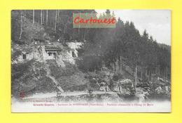 CPA  68 ¤¤ LE BONHOMME ¤¤ Positions Allemandes à L'Etang Du Devin ¤¤ Guerre 1914 -18 Militaria - France