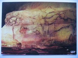 Grottes Du Pech Merle  /  Chapelle Des Mammouths - Histoire