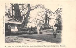 Congo - Topo / 52 - Arrivée Par Chemin De Fer De Marchandises D' Europe Chargées à Matadi - Congo Belge - Autres