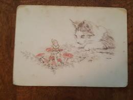 Illustrateur Marja Slab - Chat, Lutin, Champignons - Autres Illustrateurs
