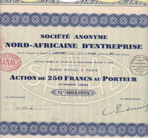 Th3NORD-AFRICAINE : Action De 250 Frs1929  (29) - Actions & Titres