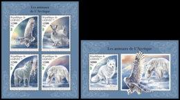 GUINEA REP. 2018 **MNH Arctic Animals Arktische Tiere Animaux De Arctique M/S+S/S - IMPERFORATED - DH1847 - Faune Arctique
